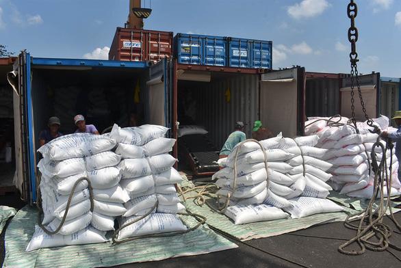 Chuyện khó tin: Xuất khẩu nông sản Việt giảm hơn một nửa vì thiếu... container - Ảnh 3.