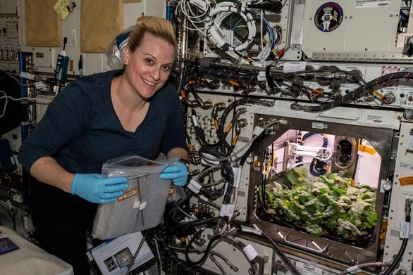 Thu hoạch mẻ củ cải đầu tiên trồng ngoài không gian - Ảnh 1.