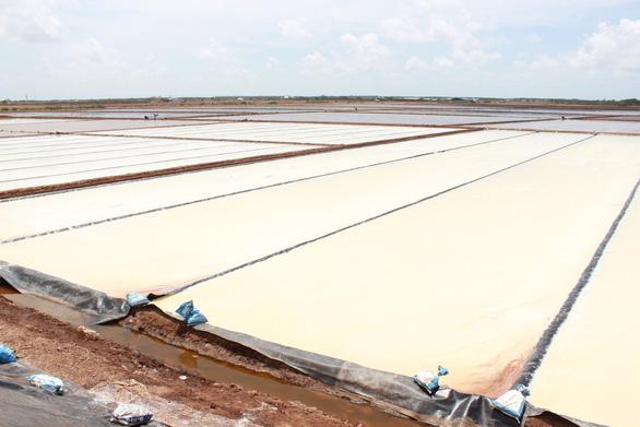 Nghề làm muối ở Bạc Liêu là di sản văn hóa phi vật thể quốc gia - Ảnh 1.