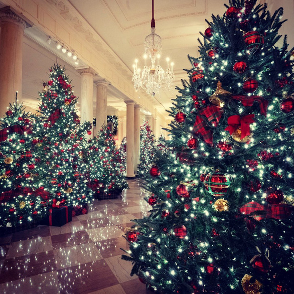 Vợ chồng ông Trump dự lễ lên đèn Giáng sinh tại Nhà Trắng - Ảnh 6.