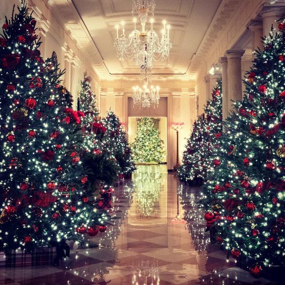 Vợ chồng ông Trump dự lễ lên đèn Giáng sinh tại Nhà Trắng - Ảnh 4.