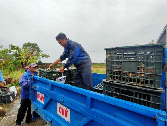 Trao sinh kế giúp người dân Quảng Nam vượt qua khó khăn sau bão lũ - Ảnh 7.