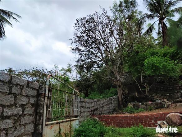 Nhà xây đồ sộ không phép trên đất lâm nghiệp ở Ghềnh Ráng nhưng địa phương không biết - Ảnh 5.