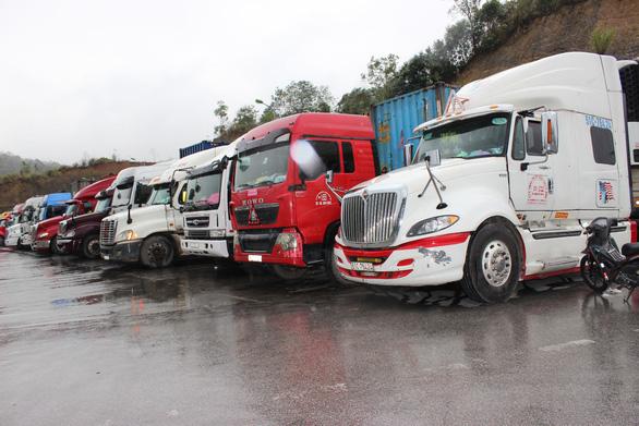 Xây dựng quy trình xuất nhập khẩu hàng hóa đảm bảo yêu cầu phòng chống dịch - Ảnh 1.