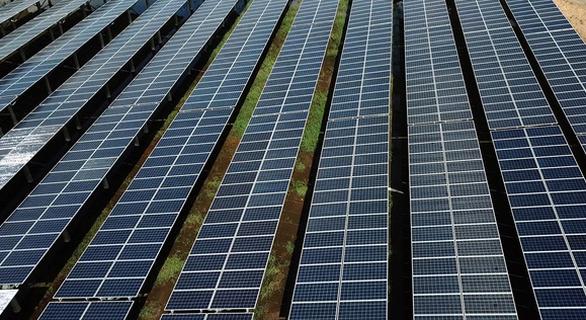36 dự án điện mặt trời sẽ 'thoát' cơ chế đấu thầu? - Ảnh 1.
