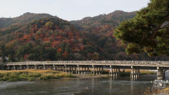 Vượt COVID-19, Kyoto kích cầu bằng chiến dịch du lịch vắng - Ảnh 3.