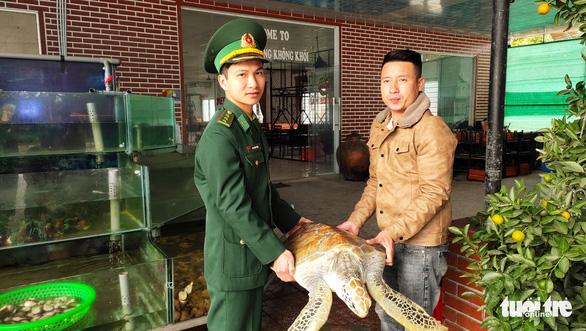 Chủ nhà hàng hải sản mua rùa quý nặng 30kg đem thả về biển - Ảnh 3.