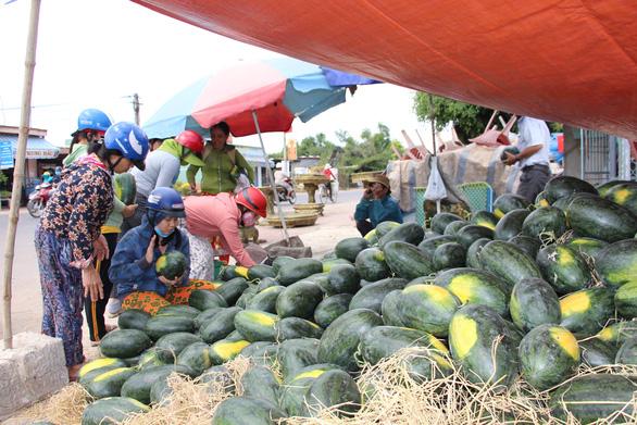 Hàng trăm tấn dưa hấu của nông dân ùn ứ vì dịch corona, thương lái trả giá 1.000 đồng/kg - Ảnh 5.