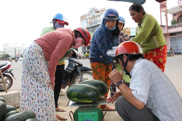 Hàng trăm tấn dưa hấu của nông dân ùn ứ vì dịch corona, thương lái trả giá 1.000 đồng/kg - Ảnh 3.