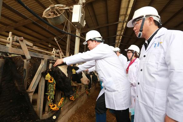 Nhập 4.500 con bò sữa cao sản HF từ Mỹ - Ảnh 3.
