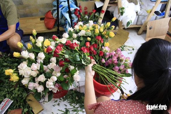 Giải cứu hơn 10.000 hoa hồng Đà Lạt trong hai ngày - Ảnh 1.