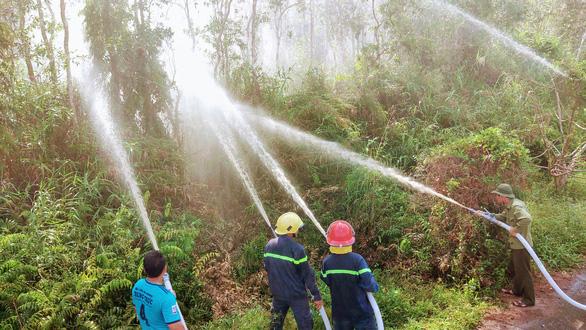 Nguy cơ cháy rừng ở Vườn quốc gia U Minh Hạ rất lớn - Ảnh 3.