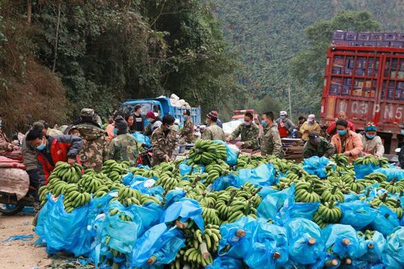 Dân làng gom 22 tấn chuối gửi đến tâm dịch Vũ Hán - Ảnh 2.