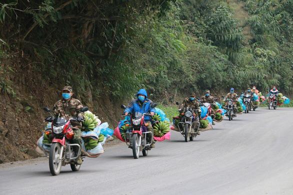 Dân làng gom 22 tấn chuối gửi đến tâm dịch Vũ Hán - Ảnh 1.