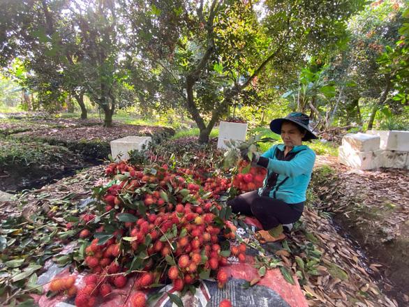 Nhiều nước hỗ trợ doanh nghiệp, Việt Nam cũng cần có? - Ảnh 1.