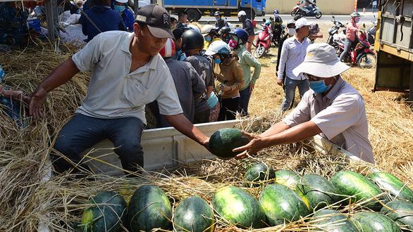 Cộng đồng ra tay giải cứu nông sản mùa dịch virus corona - Ảnh 3.