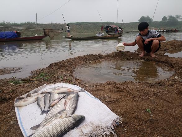 Cá chết hàng loạt trên sông Chu - Ảnh 3.