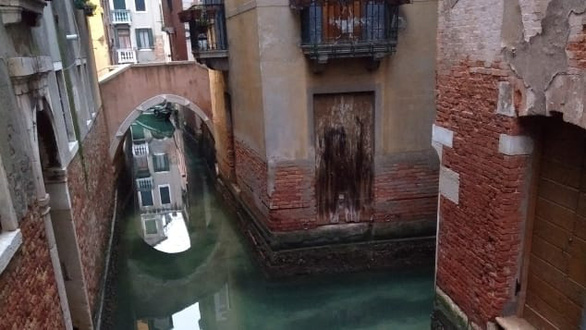 Nước kênh trong vắt, không khí sạch hơn ở Venice sau lệnh phong toả vì COVID-19 - Ảnh 5.