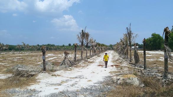 Giám đốc vẽ dự án trên đất nông nghiệp, lừa hàng trăm người đã biến mất - Ảnh 1.