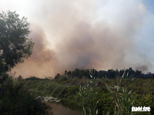 Cháy lớn tại bãi cỏ và vườn tràm khói mù mịt bao trùm cả khu vực - Ảnh 4.