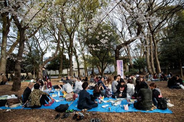 Bất chấp khuyến cáo, hàng ngàn người Nhật đổ xô đi ngắm hoa anh đào - Ảnh 3.