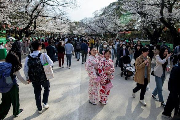 Bất chấp khuyến cáo, hàng ngàn người Nhật đổ xô đi ngắm hoa anh đào - Ảnh 4.