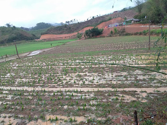Dông lốc quật đứt cầu treo, mưa đá dày đặc lại xuất hiện ở Lào Cai - Ảnh 4.