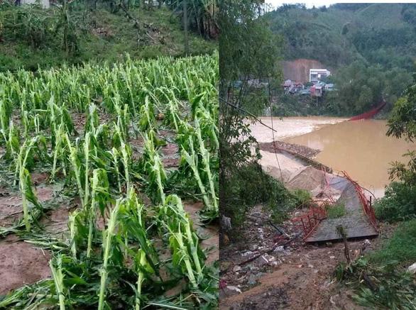 Dông lốc quật đứt cầu treo, mưa đá dày đặc lại xuất hiện ở Lào Cai - Ảnh 3.