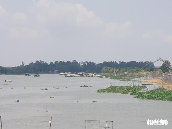 Hàng chục ghe lúa từ Campuchia về tắc ở cửa khẩu Vĩnh Hội Đông - Ảnh 1.