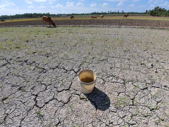 Sống trên vùng nhiều nước mà lại thiếu nước, rất vô lý - Ảnh 1.