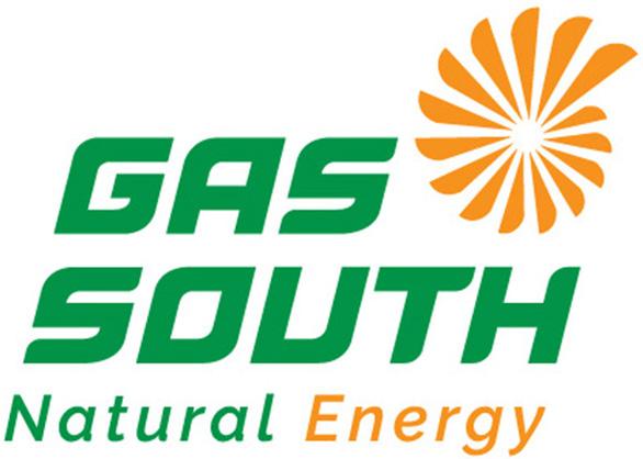 Kỉ niệm 20 năm thành lập, GAS SOUTH ra mắt logo mới - Ảnh 2.