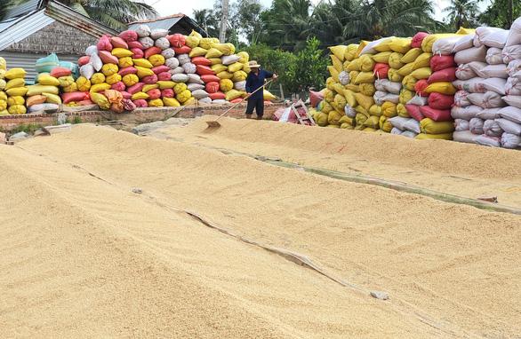Chính phủ cho phép xuất khẩu 3 triệu tấn gạo thì vẫn ổn - Ảnh 3.