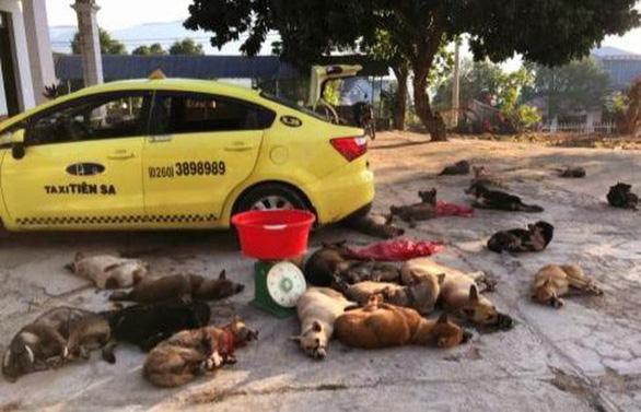 Mang cả taxi đi chở 22 con chó bắt trộm được - Ảnh 1.