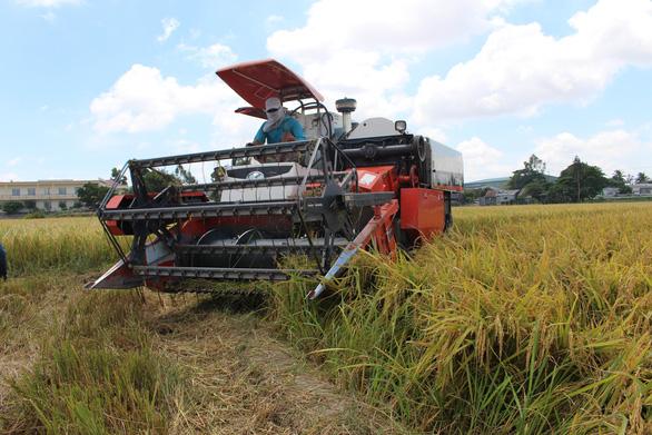 Chỉ cho phép xuất khẩu 400.000 tấn gạo trong tháng 4 - Ảnh 2.