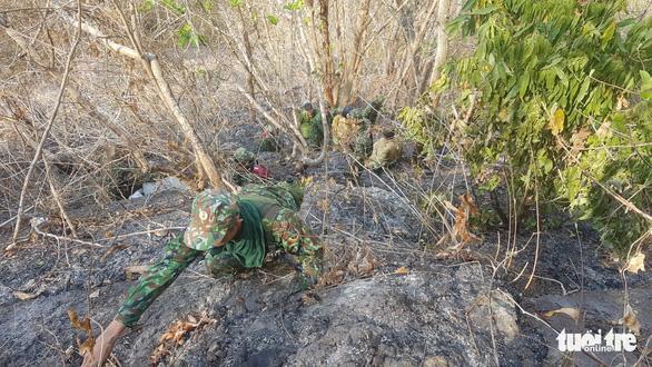 Gần 600 người chữa cháy rừng Núi Cấm 2 ngày mới tắt - Ảnh 4.