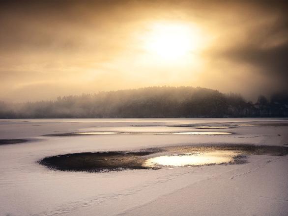 Thời tiết ấm kỷ lục, gấu ngủ đông tỉnh dậy sớm cả 2 tháng - Ảnh 3.
