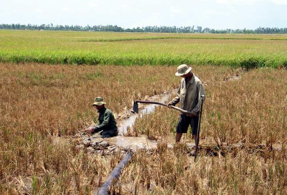 Hỗ trợ 4 tỉ đồng cho 5 tỉnh công bố tình huống khẩn cấp về hạn mặn - Ảnh 1.