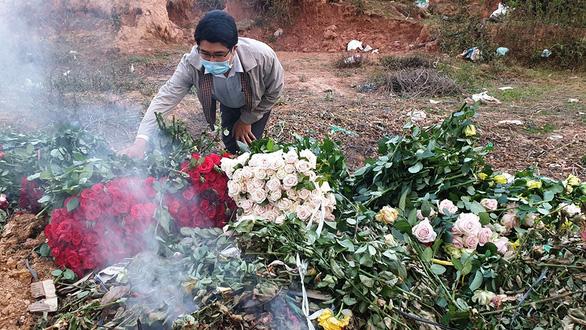 Dân trồng hoa Đà Lạt mời mọi người... cắt miễn phí - Ảnh 1.