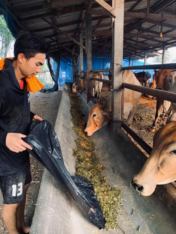 Thai League tạm nghỉ: Cầu thủ, HLV làm ruộng, chăn bò, bán bánh mì... kiếm sống - Ảnh 2.