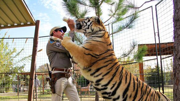 Tiger King - Vua hổ: Lật tẩy thế giới của những tay nuôi thú - Ảnh 1.