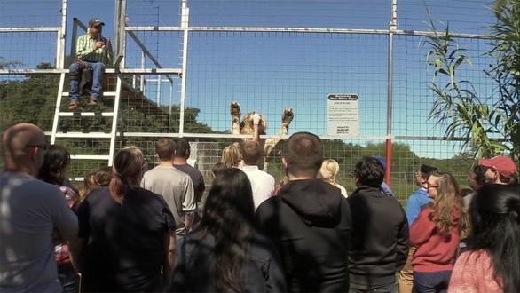 Tiger King - Vua hổ: Lật tẩy thế giới của những tay nuôi thú - Ảnh 2.