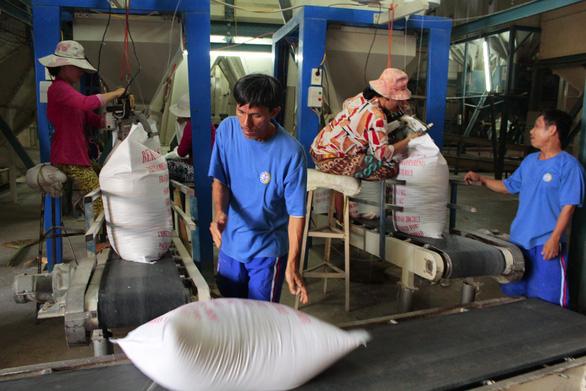 Sau vụ mở tờ khai nửa đêm: Kiến nghị giao hạn ngạch xuất khẩu gạo cho địa phương - Ảnh 5.