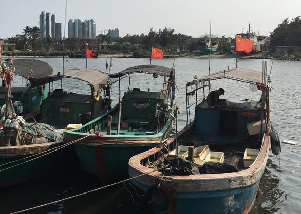 Chuyên gia Greg Poling: Trung Quốc sẽ không ngừng quấy phá Biển Đông - Ảnh 1.