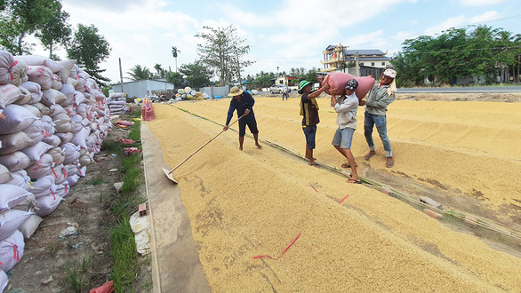 Tạm ứng hạn ngạch 100.000 tấn gạo để gỡ khó cho doanh nghiệp xuất khẩu - Ảnh 2.
