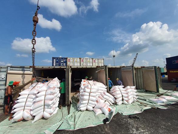 Phải mở cửa cho xuất khẩu gạo - Ảnh 1.