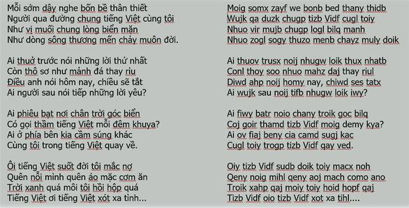 Chữ Việt Nam song song: dư luận đòi 'cách ly vĩnh viễn', tác giả nói sẽ viết sách - Ảnh 3.