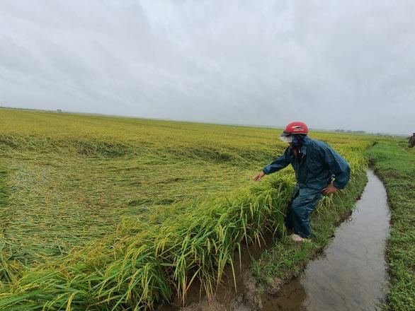 Nhiều nơi nắng hạn, Thừa Thiên Huế lại ngập vì mưa, vụ mùa bị đe dọa - Ảnh 3.