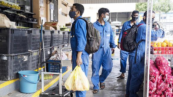 Singapore buộc doanh nghiệp không chèn ép nhân viên trong mùa dịch - Ảnh 1.
