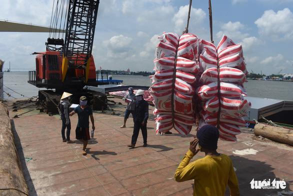 14 tàu chở 54.000 tấn gạo đã rời cảng Mỹ Thới đi các nước - Ảnh 1.