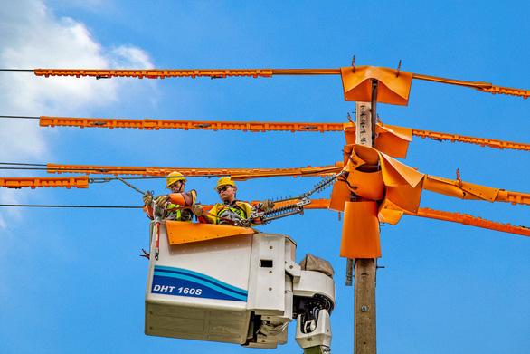 45 năm EVNSPC - hành trình điện khí hóa nông thôn và nâng chất dịch vụ - Ảnh 4.